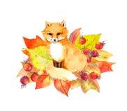 在秋叶的逗人喜爱的狐狸和莓果 水彩 免版税图库摄影