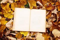 在秋叶背景的葡萄酒书 免版税库存图片