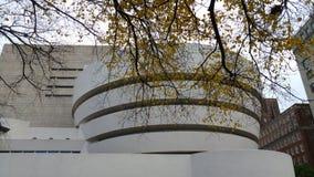 在秋叶- NYC的掩护下古根汉-纽约-建筑学 库存图片