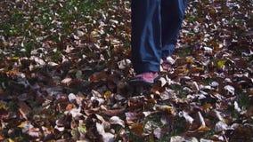 在秋天下落的黄色叶子的妇女腿在公园 股票录像