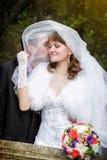 在秋天公园亲吻新娘和新郎 库存图片