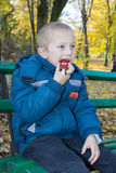 在秋天公园吃糖果的婴孩 图库摄影