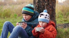 在秋天公园孩子坐草坪和饮料热的茶,在新鲜空气的步行 股票视频