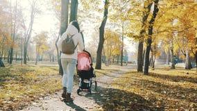 在秋天公园照顾走与一辆婴孩摇篮车 爱和家庭观念 股票录像