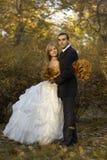 在秋天公园的婚礼夫妇 美好的已婚夫妇在婚礼之日 免版税库存照片