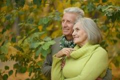 在秋天公园的老夫妇 免版税库存照片