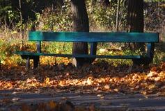 在秋天公园的被遮蔽的老绿色长木凳 晴朗的日 平静的秋天心情 库存照片