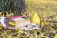 读在秋天公园 免版税库存图片