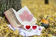 读在秋天公园 图库摄影