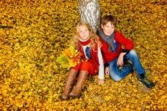 在秋天公园 免版税库存照片