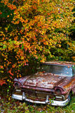 在秋天叶子下的被放弃的破烂物汽车 免版税图库摄影