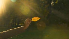 在秋天叶子写的10月,举行文字,明亮的金黄秋季的手 股票视频
