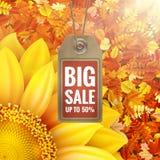 在秋天叶子的向日葵与销售标记 10 eps 库存图片