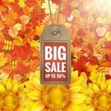 在秋天叶子的向日葵与销售标记 10 eps 图库摄影