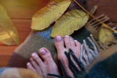 在秋天叶子的脚趾 晴朗的秋天早晨,脚趾,被包裹 免版税库存照片