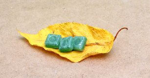 在秋天叶子的绿色薄菏糖果 库存照片