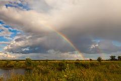 在秋天和水的五颜六色的Ranibow 免版税库存图片