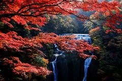 在秋天季节期间的著名Fukuroda瀑布 免版税库存图片