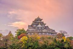 在秋天季节的冈山城堡在冈山市,日本 免版税图库摄影