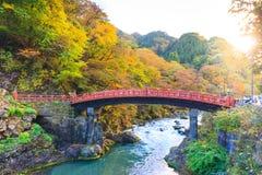在秋天季节的日光红色Shinkyo桥梁 免版税库存图片