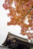 在秋天季节的日本大厦 免版税库存照片