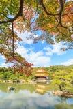 在秋天季节的金黄亭子Kinkakuji寺庙在京都 库存图片