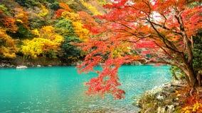在秋天季节的Arashiyama沿河在京都,日本 免版税库存图片
