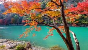 在秋天季节的Arashiyama沿河在京都,日本 免版税库存照片