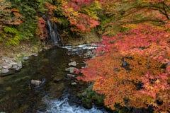 在秋天季节的Fudo小河在Nakano momiji山 免版税库存照片