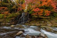 在秋天季节的Fudo小河在Nakano momiji山 免版税图库摄影