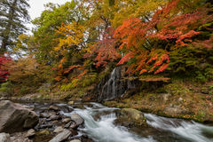 在秋天季节的Fudo小河在Nakano momiji山 库存图片
