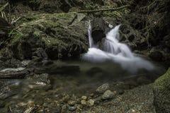 在秋天小河的小秋天 库存照片