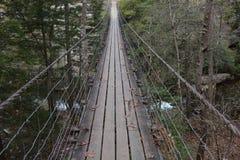 在秋天小河秋天的平旋桥在田纳西由强的钢缆绳举行 免版税图库摄影