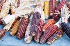 在秋天市场上的装饰玉米 免版税库存照片