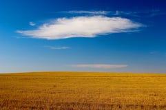 在秋天庄稼域的云彩 免版税库存图片