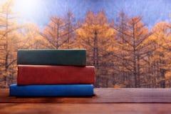 在秋天或秋天季节概念,被弄脏的黄色Fo的阅读书 库存图片
