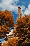 在秋天时间的埃佛尔铁塔 免版税图库摄影