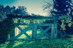 在秋天时间的木门 免版税库存照片