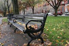 在秋天期间的公园长椅 免版税库存图片