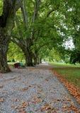 在秋天期间的公园 库存照片