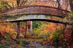 在秋天期间的植物园被成拱形的桥梁阿什维尔 库存照片