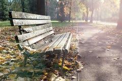 在秋天期间的老长木凳 库存图片