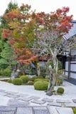 在秋天期间的日本红槭树在Enkoji寺庙的庭院里在京都,日本 库存照片