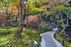 在秋天期间的日本红槭树在Enkoji寺庙的庭院里在京都,日本 库存图片