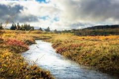 在秋天期间的美丽的河 免版税库存图片