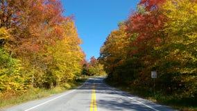 在秋天期间的美国路 图库摄影