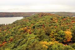 在秋天期间的阿尔根金族国家公园 库存图片