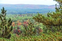 在秋天期间的阿尔根金族国家公园 库存照片