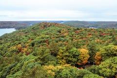 在秋天期间的阿尔根金族国家公园 免版税库存照片