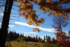 在秋天期间的Beskydy山 库存图片